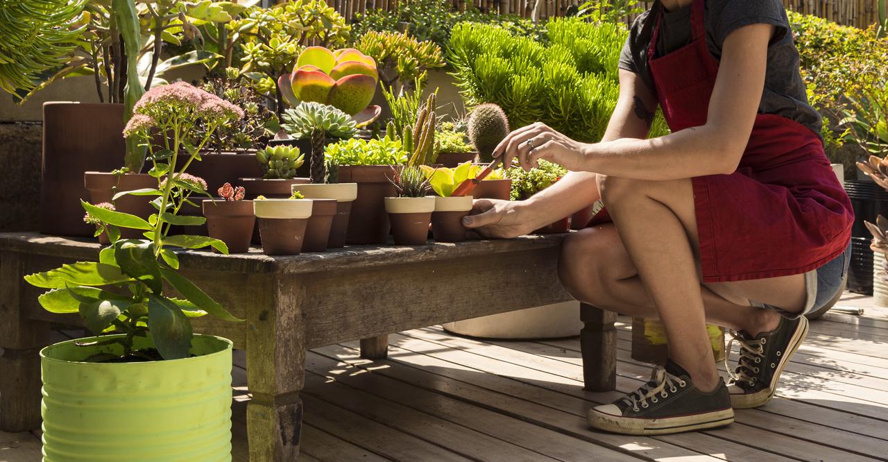 A woman tending to her indoor garden